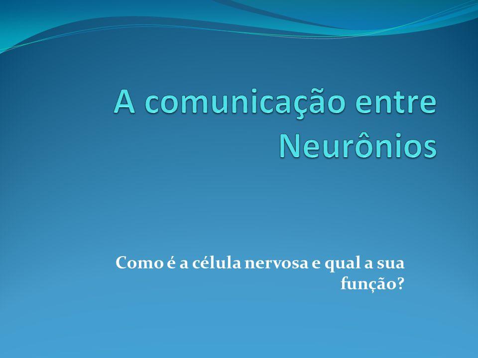A comunicação entre Neurônios