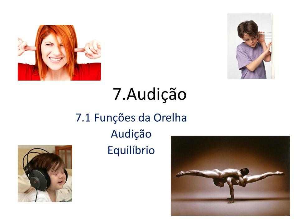 7.1 Funções da Orelha Audição Equilíbrio