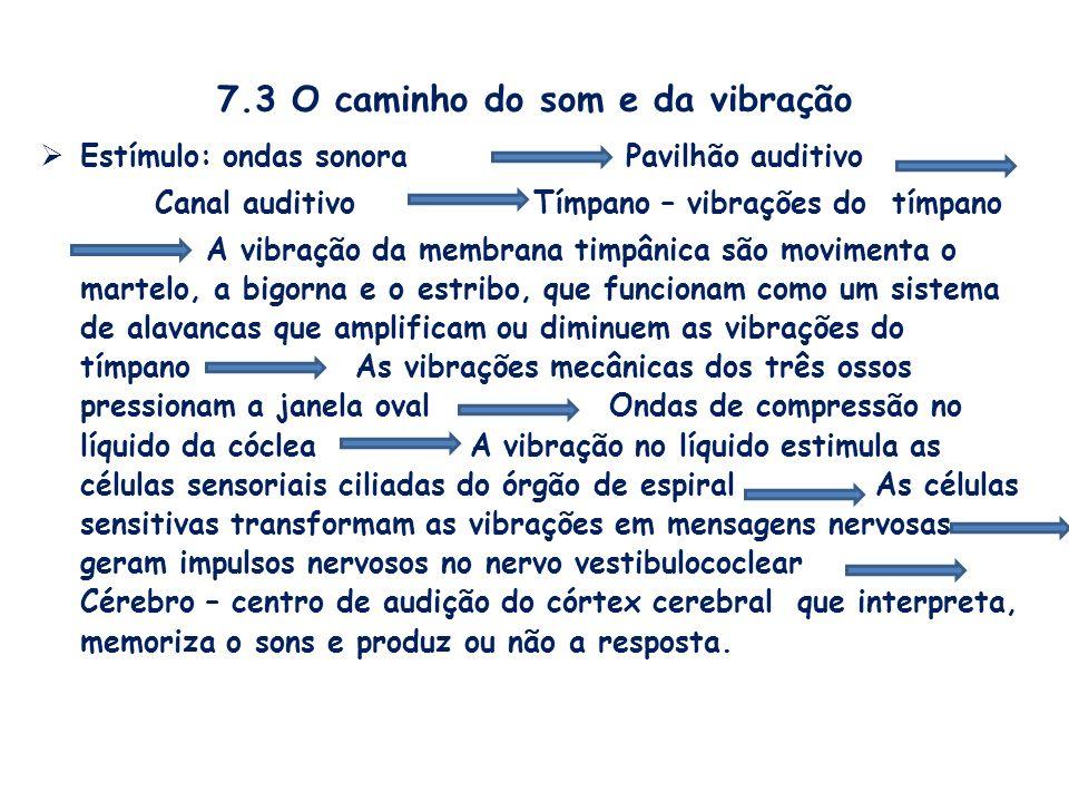 7.3 O caminho do som e da vibração