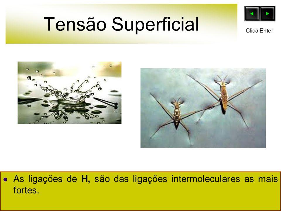Tensão Superficial Clica Enter As ligações de H, são das ligações intermoleculares as mais fortes.