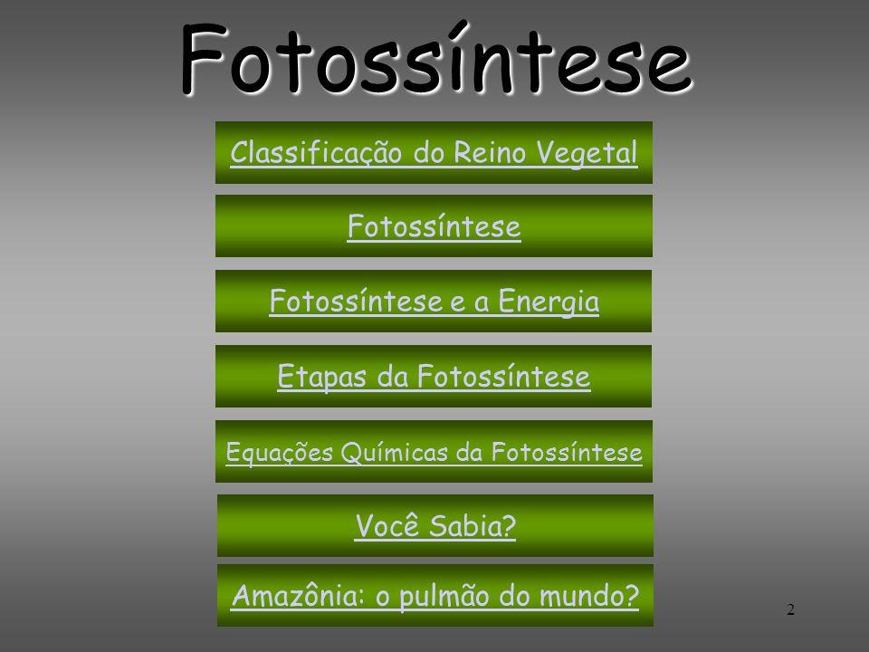 Fotossíntese Classificação do Reino Vegetal Fotossíntese