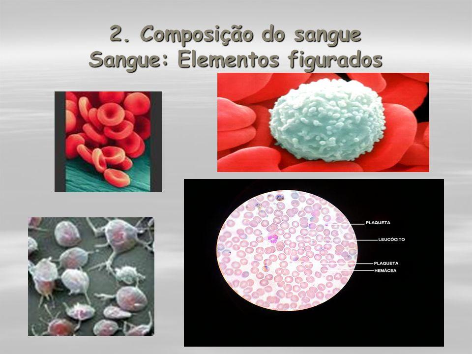 2. Composição do sangue Sangue: Elementos figurados