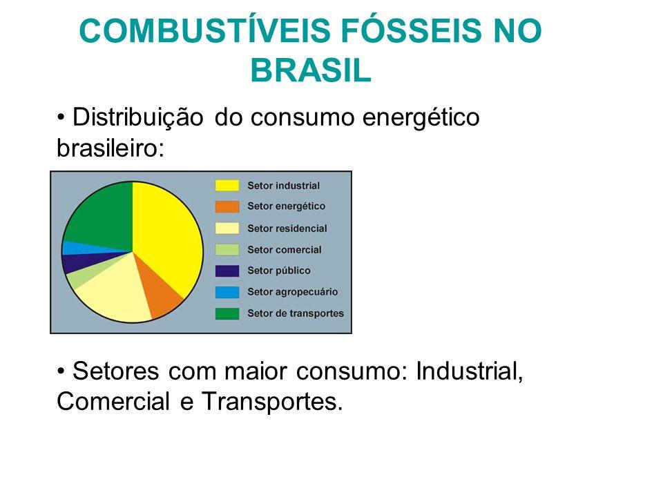 COMBUSTÍVEIS FÓSSEIS NO BRASIL