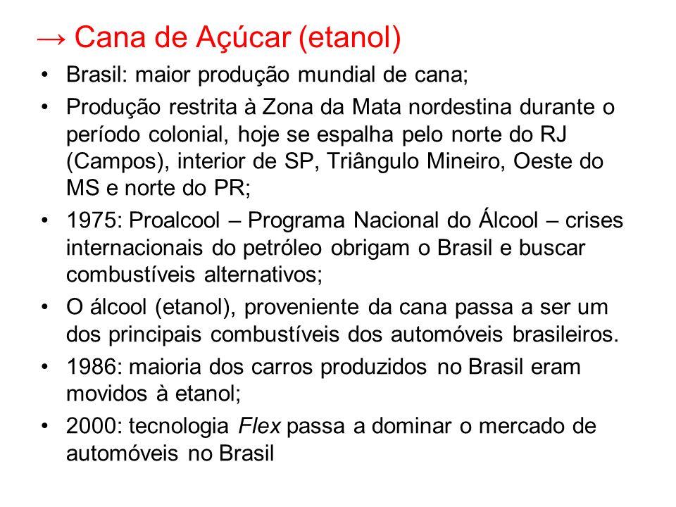 → Cana de Açúcar (etanol)