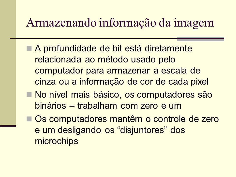Armazenando informação da imagem