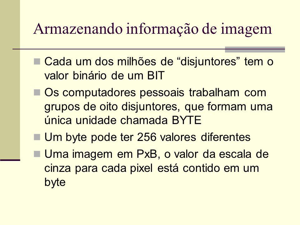 Armazenando informação de imagem