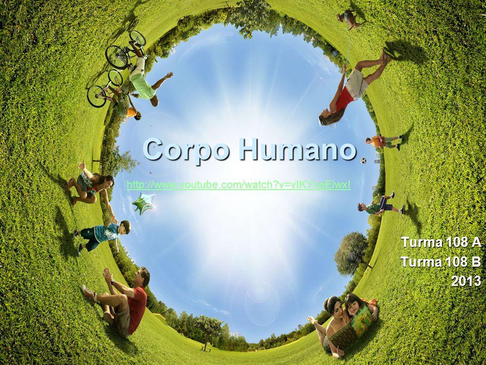 Corpo Humano Turma 108 A Turma 108 B 2013