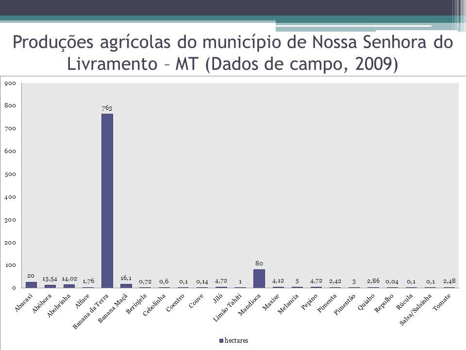 Produções agrícolas do município de Nossa Senhora do Livramento – MT (Dados de campo, 2009)