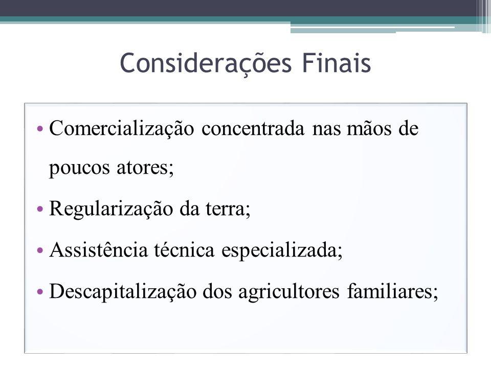 Considerações FinaisComercialização concentrada nas mãos de poucos atores; Regularização da terra;