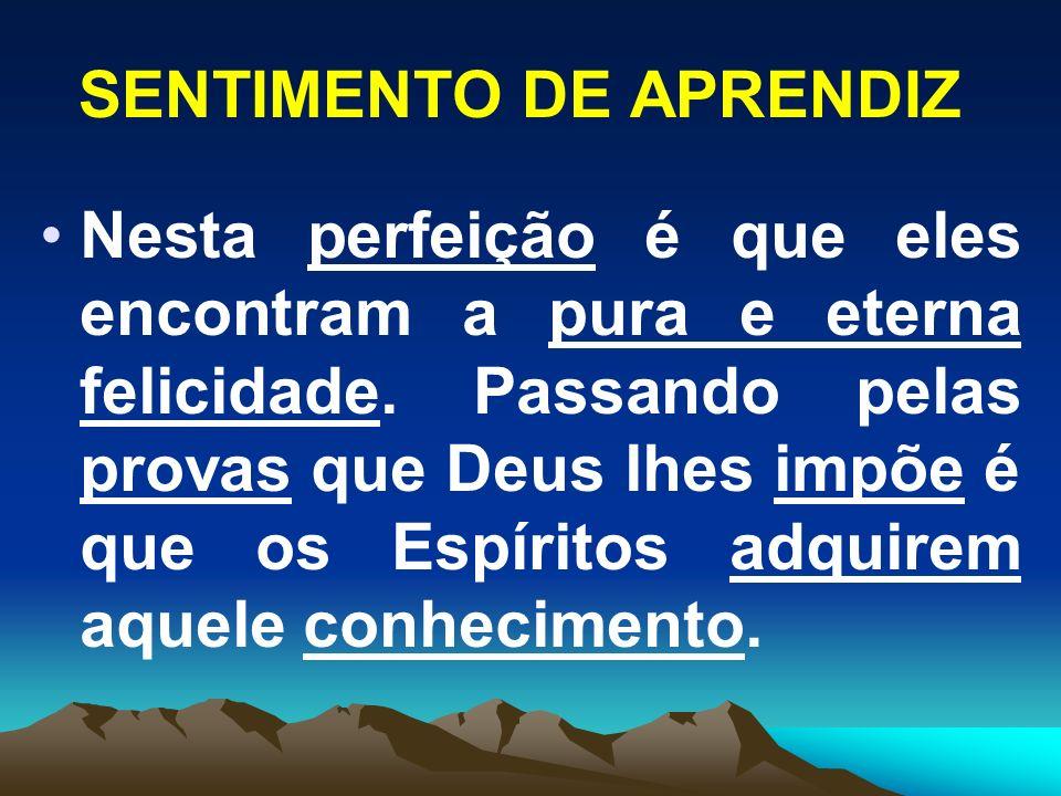SENTIMENTO DE APRENDIZ