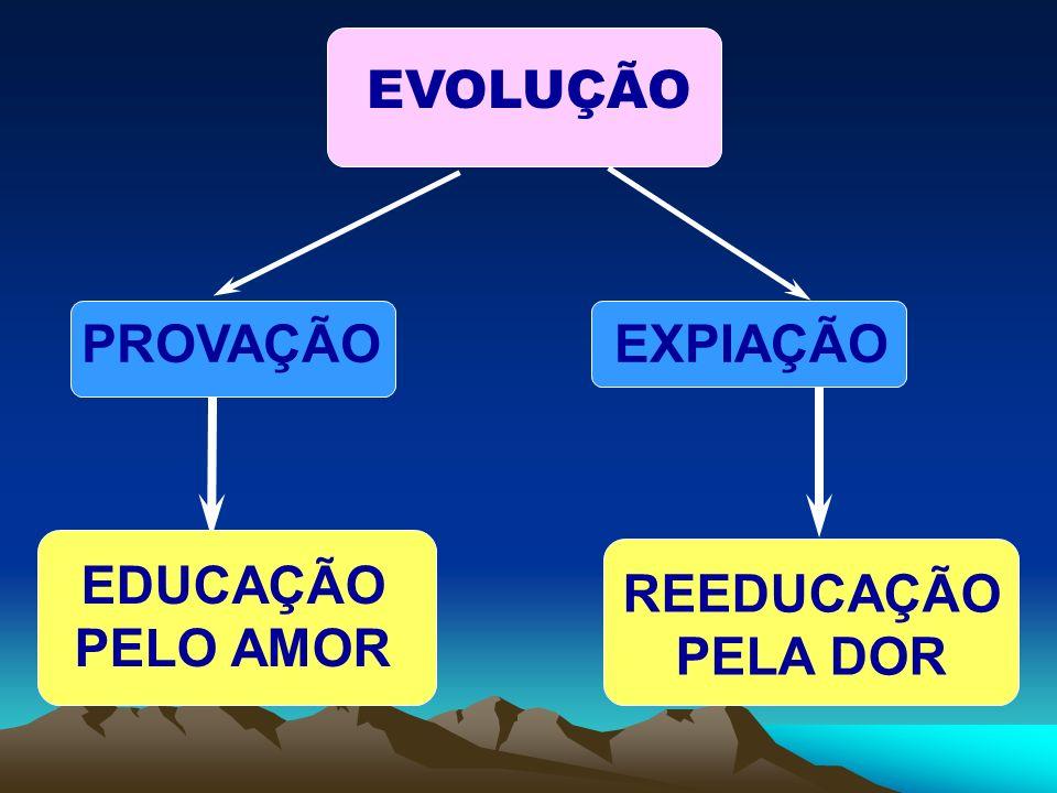 EVOLUÇÃO PROVAÇÃO EXPIAÇÃO EDUCAÇÃO PELO AMOR REEDUCAÇÃO PELA DOR