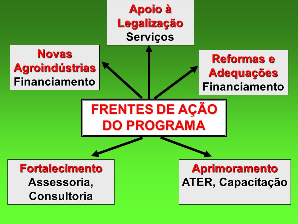 FRENTES DE AÇÃO DO PROGRAMA