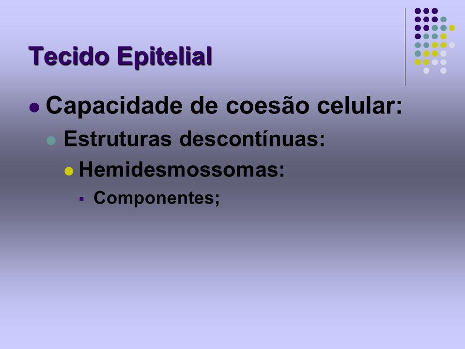 Tecido Epitelial Capacidade de coesão celular: