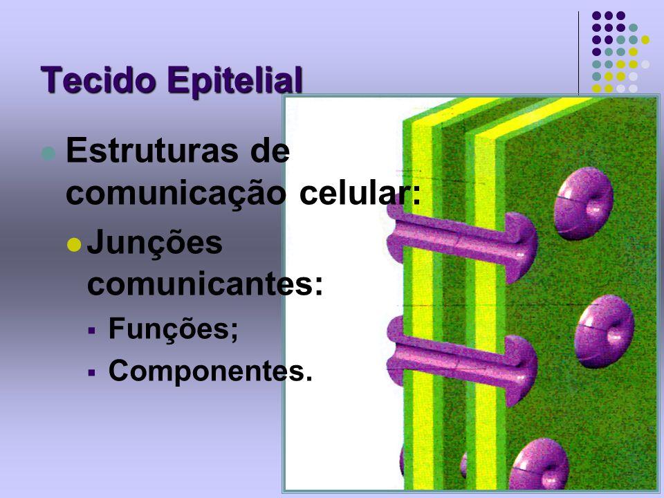 Tecido Epitelial Estruturas de comunicação celular: