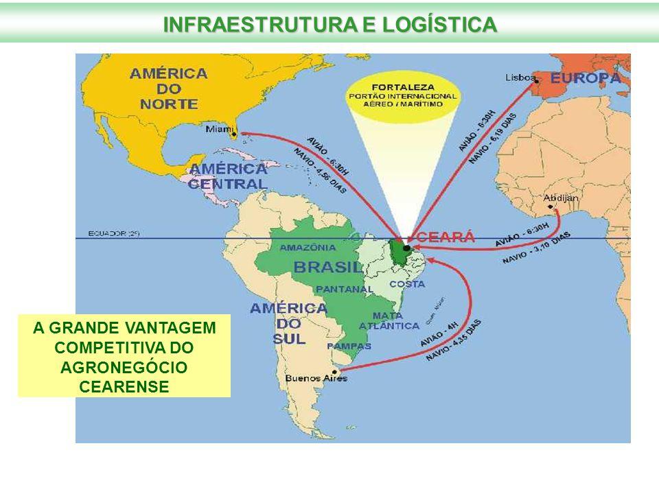 INFRAESTRUTURA E LOGÍSTICA COMPETITIVA DO AGRONEGÓCIO