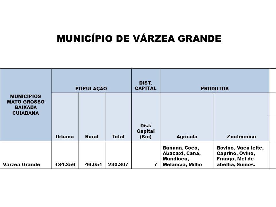MUNICÍPIO DE VÁRZEA GRANDE