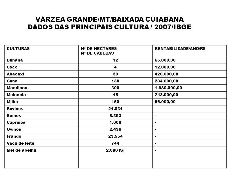 VÁRZEA GRANDE/MT/BAIXADA CUIABANA