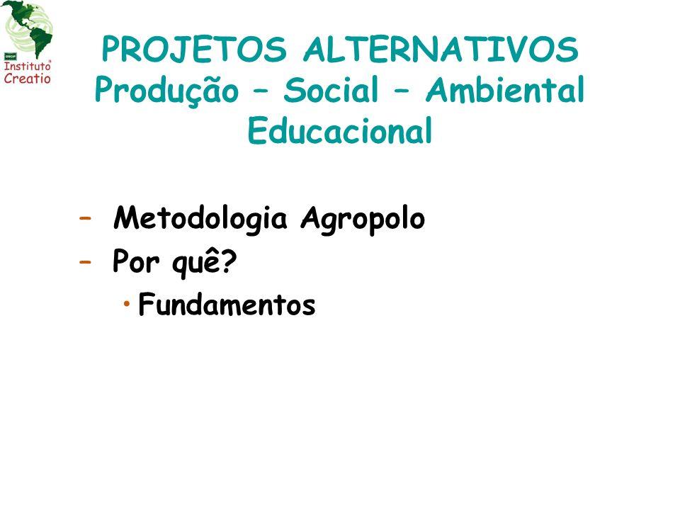 PROJETOS ALTERNATIVOS Produção – Social – Ambiental Educacional