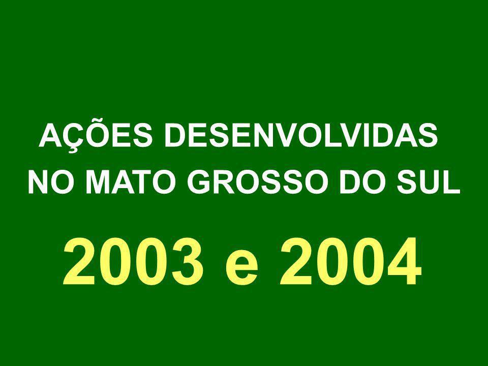 AÇÕES DESENVOLVIDAS NO MATO GROSSO DO SUL 2003 e 2004