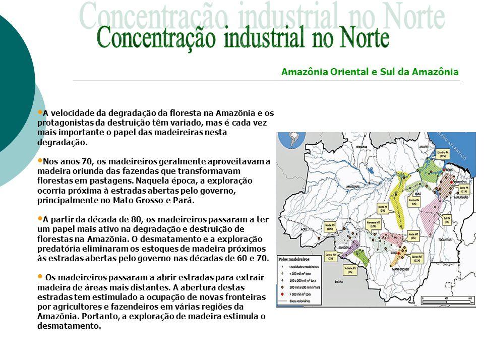 Concentração industrial no Norte
