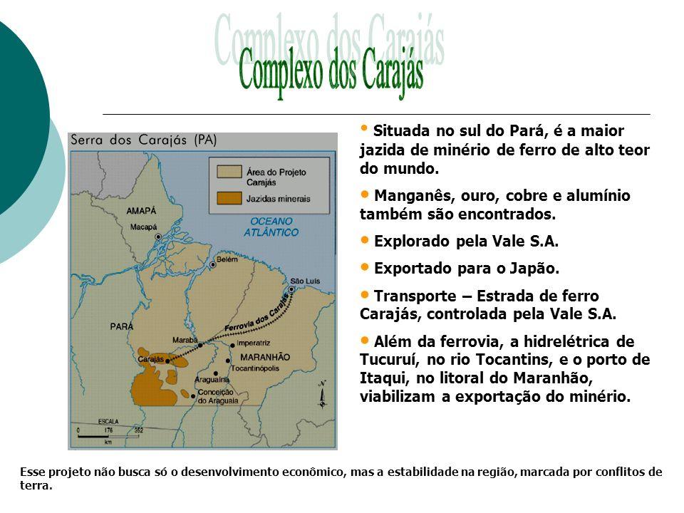 Complexo dos Carajás Situada no sul do Pará, é a maior jazida de minério de ferro de alto teor do mundo.