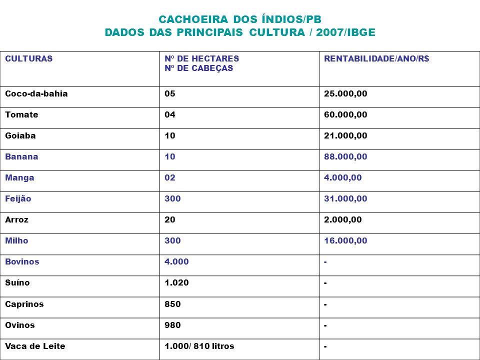 CACHOEIRA DOS ÍNDIOS/PB DADOS DAS PRINCIPAIS CULTURA / 2007/IBGE
