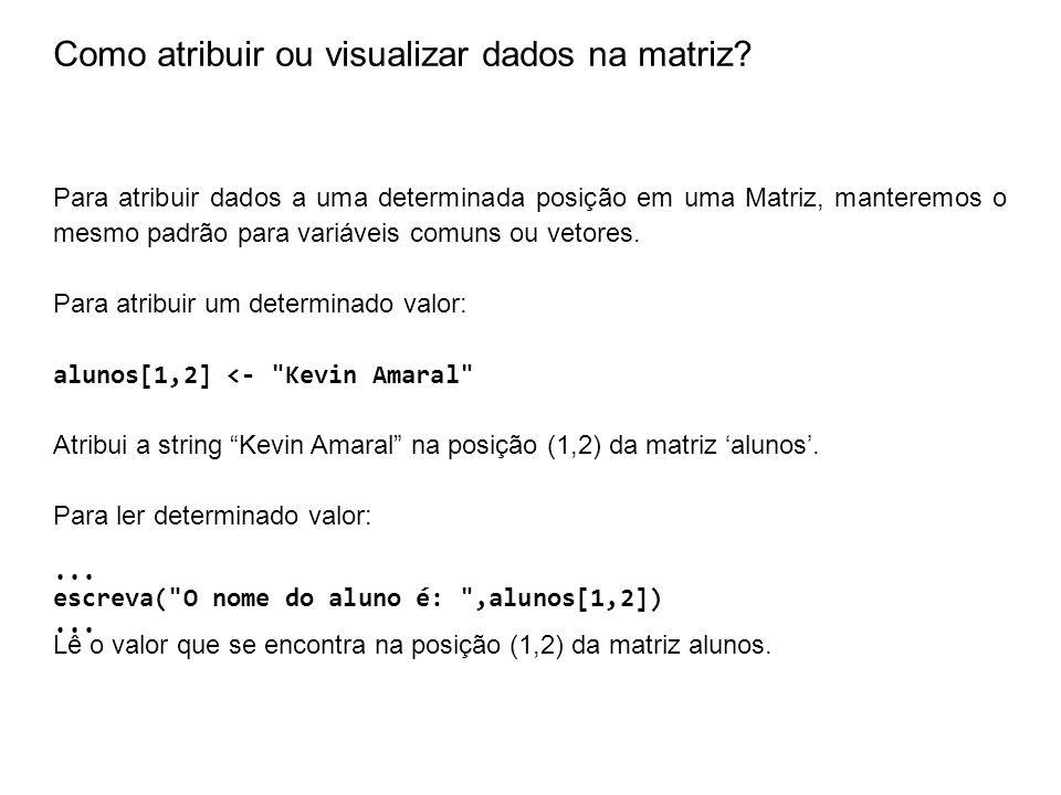 Como atribuir ou visualizar dados na matriz