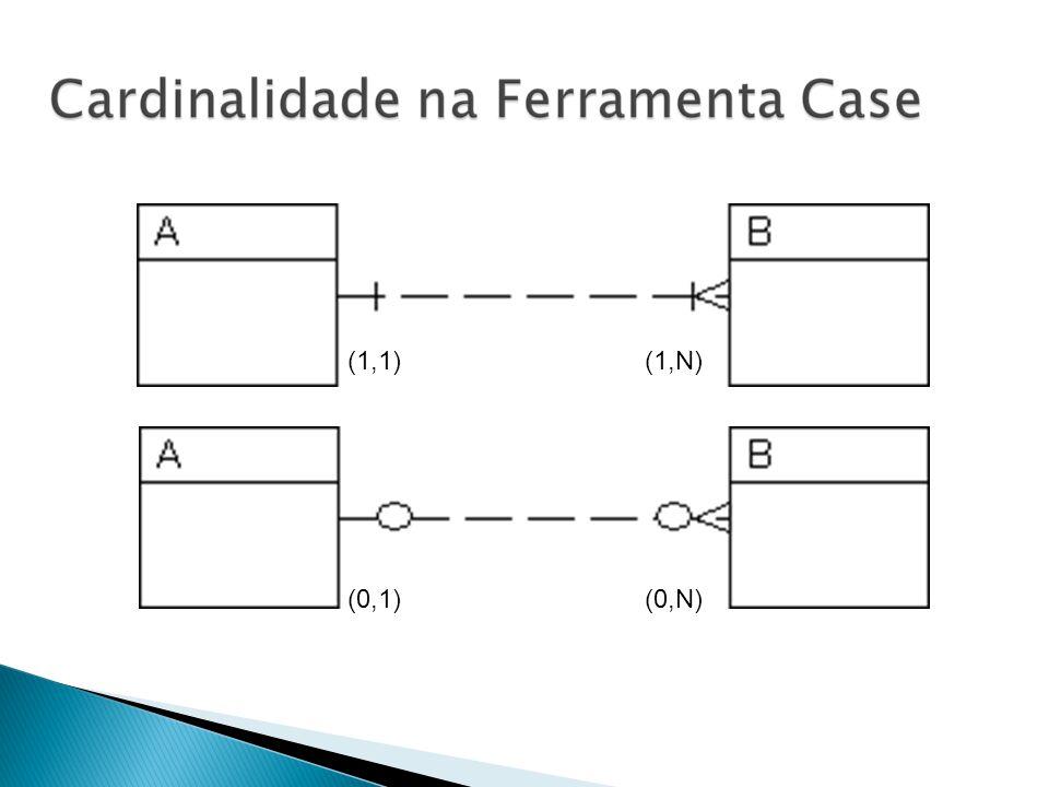 (1,1) (1,N) (0,1) (0,N)