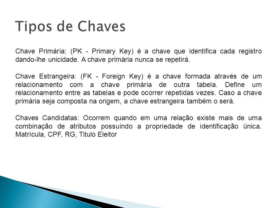 Chave Primária: (PK - Primary Key) é a chave que identifica cada registro dando-lhe unicidade. A chave primária nunca se repetirá.
