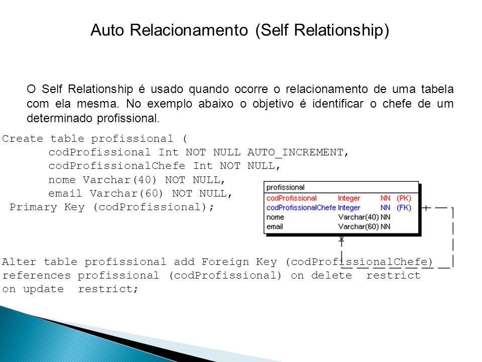 Auto Relacionamento (Self Relationship)