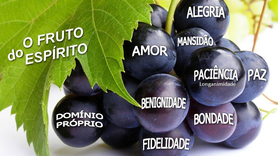 Resultado de imagem para o fruto do espírito é o amor