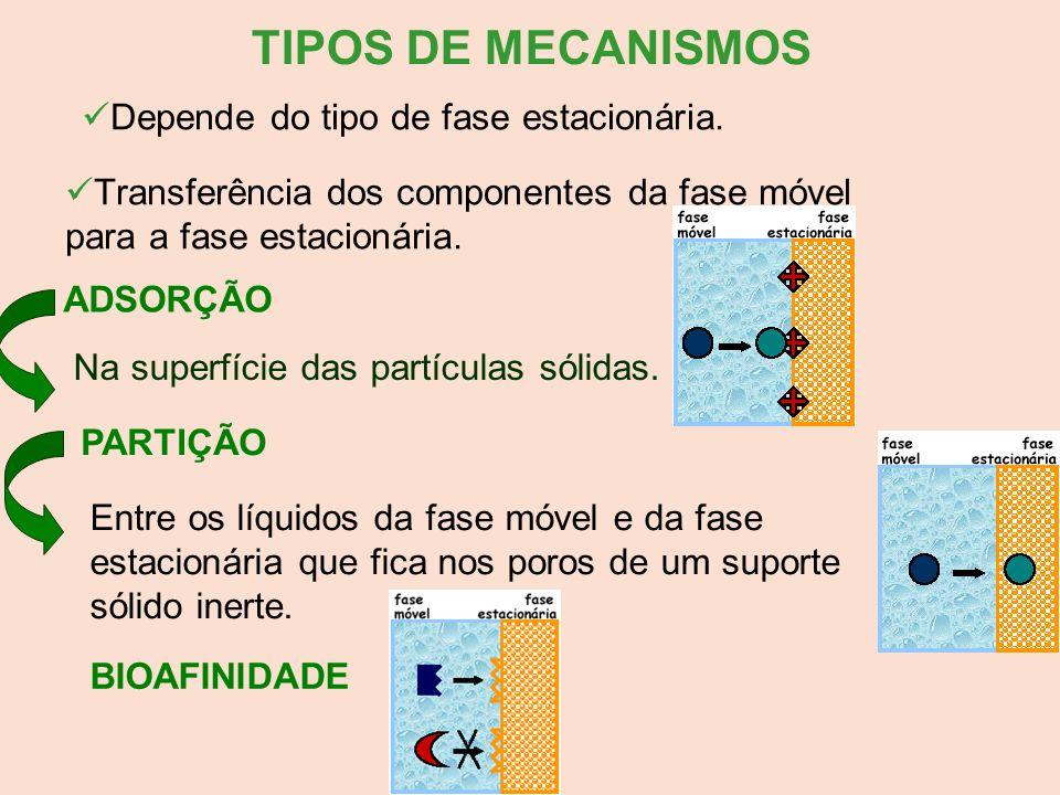 TIPOS DE MECANISMOS Depende do tipo de fase estacionária.