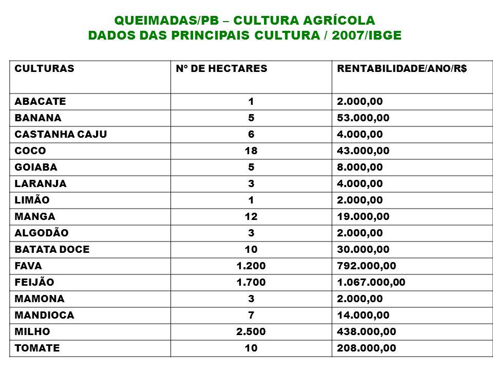 QUEIMADAS/PB – CULTURA AGRÍCOLA