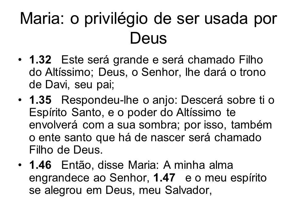 Maria: o privilégio de ser usada por Deus