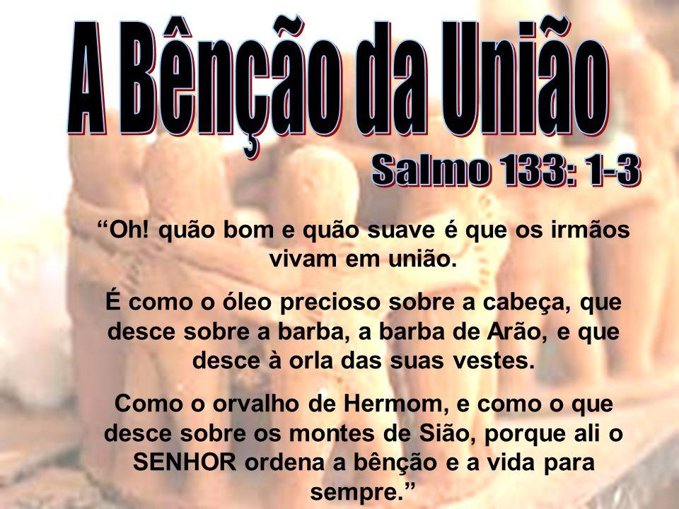 A Bênção da União Salmo 133: 1-3