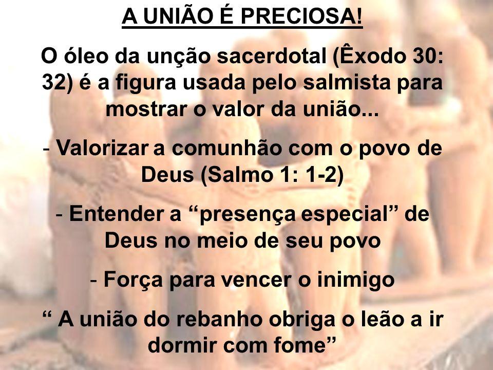 Valorizar a comunhão com o povo de Deus (Salmo 1: 1-2)