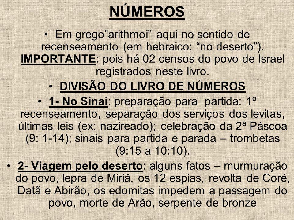 DIVISÃO DO LIVRO DE NÚMEROS
