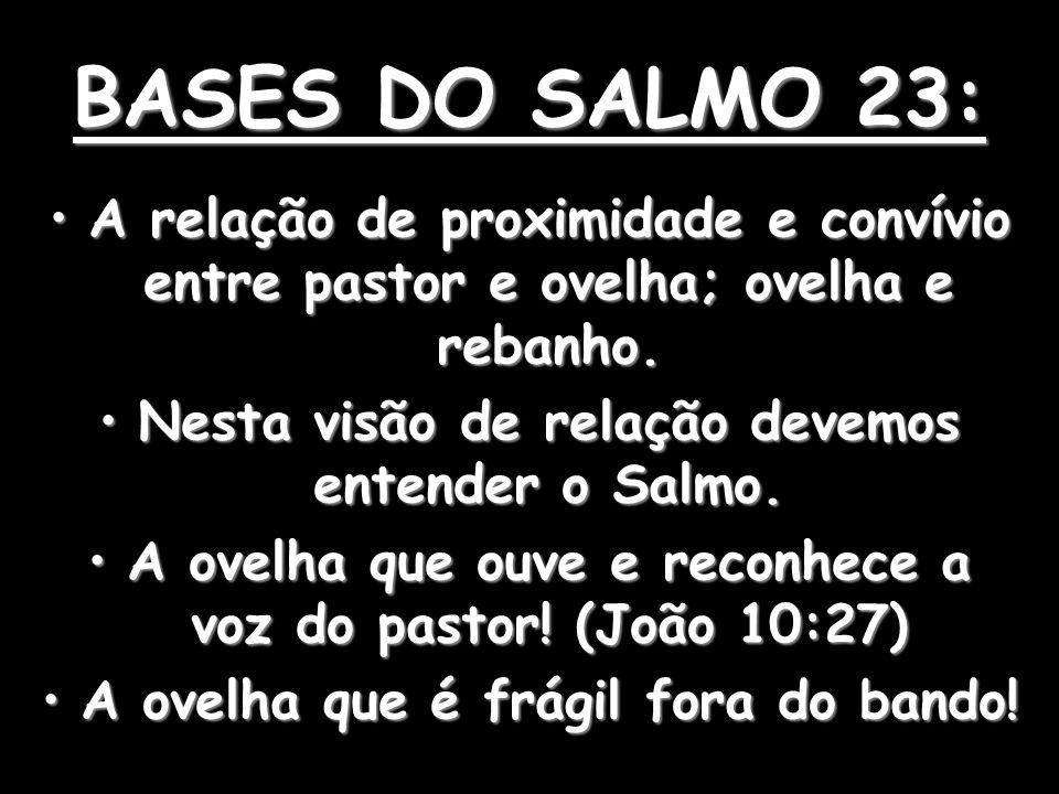 BASES DO SALMO 23: A relação de proximidade e convívio entre pastor e ovelha; ovelha e rebanho. Nesta visão de relação devemos entender o Salmo.