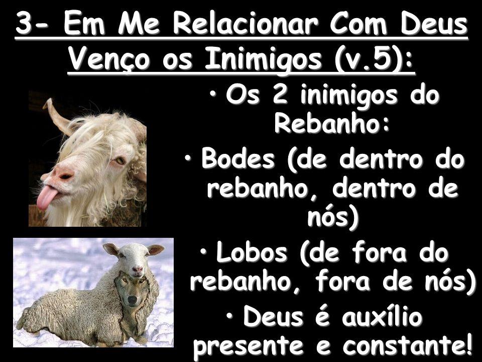 3- Em Me Relacionar Com Deus Venço os Inimigos (v.5):