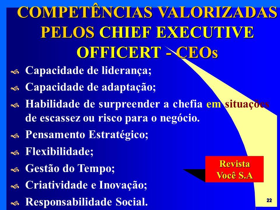COMPETÊNCIAS VALORIZADAS PELOS CHIEF EXECUTIVE OFFICERT - CEOs