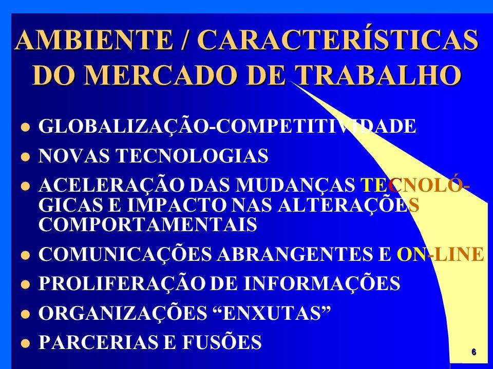 AMBIENTE / CARACTERÍSTICAS DO MERCADO DE TRABALHO