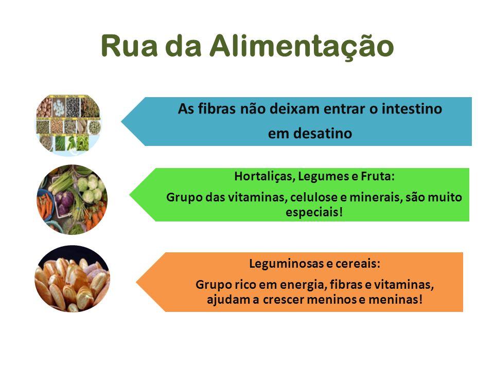 Rua da Alimentação As fibras não deixam entrar o intestino em desatino