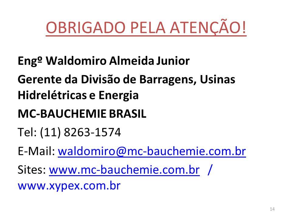 OBRIGADO PELA ATENÇÃO! Engº Waldomiro Almeida Junior