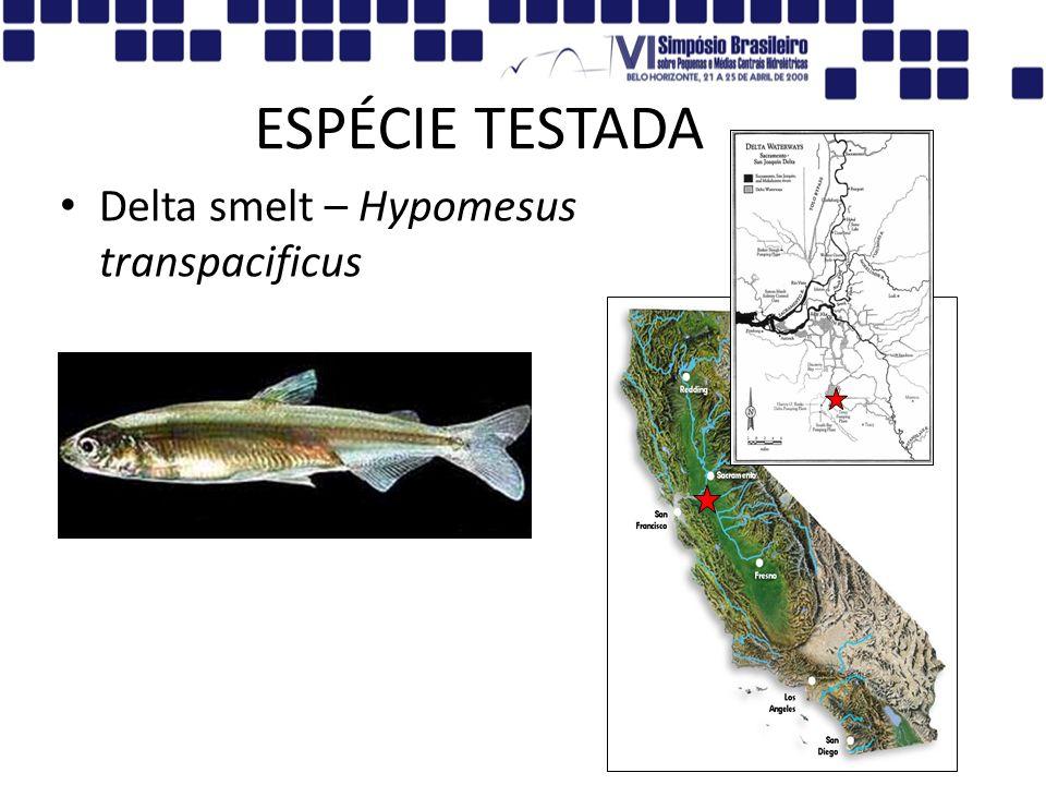 ESPÉCIE TESTADA Delta smelt – Hypomesus transpacificus