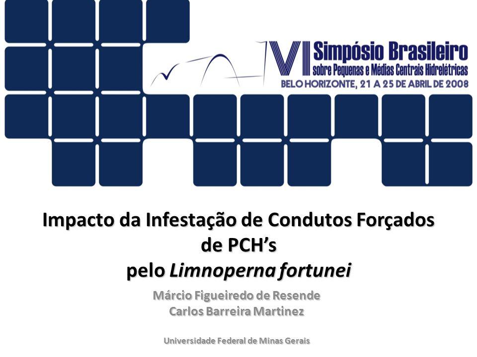 Impacto da Infestação de Condutos Forçados de PCH's pelo Limnoperna fortunei