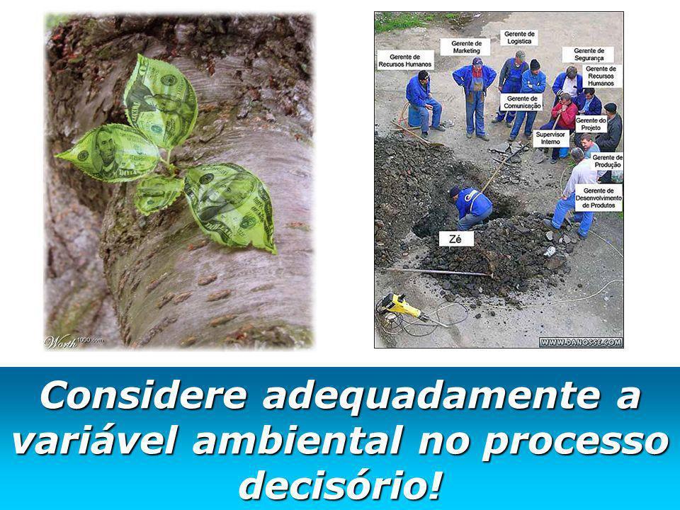 Considere adequadamente a variável ambiental no processo decisório!