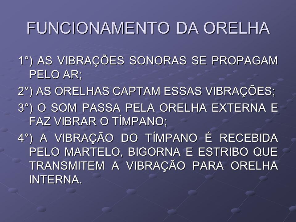 FUNCIONAMENTO DA ORELHA