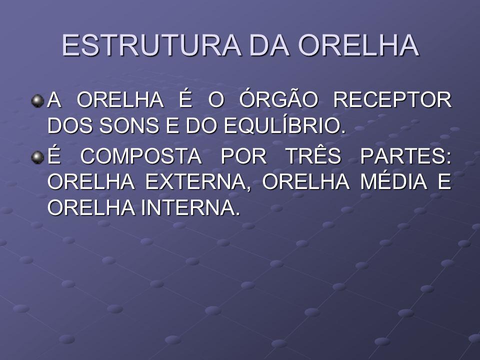ESTRUTURA DA ORELHA A ORELHA É O ÓRGÃO RECEPTOR DOS SONS E DO EQULÍBRIO.
