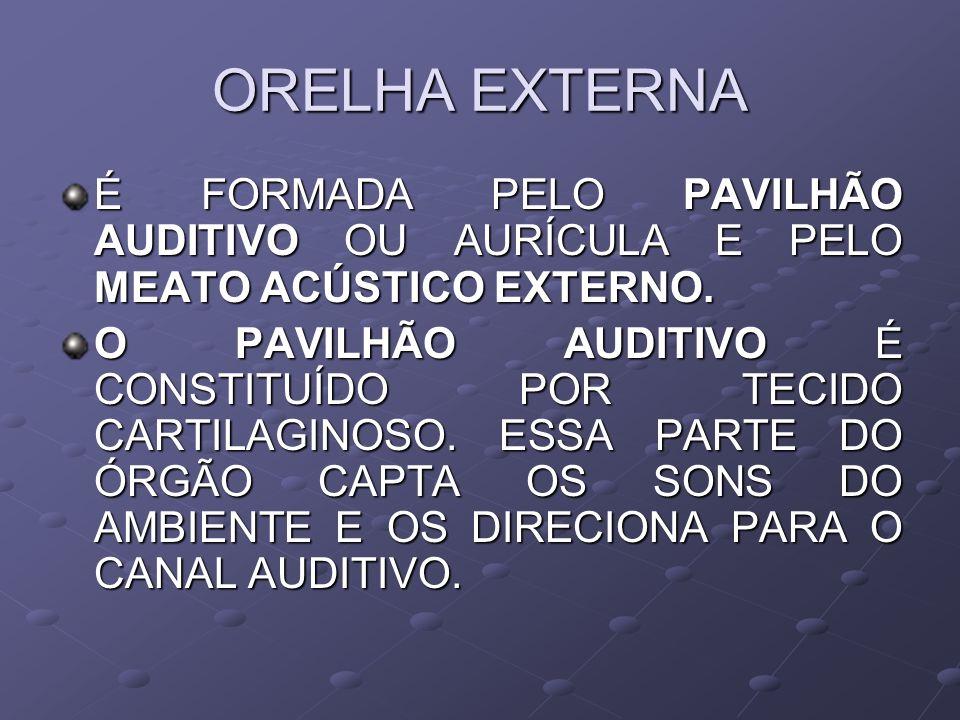 ORELHA EXTERNA É FORMADA PELO PAVILHÃO AUDITIVO OU AURÍCULA E PELO MEATO ACÚSTICO EXTERNO.