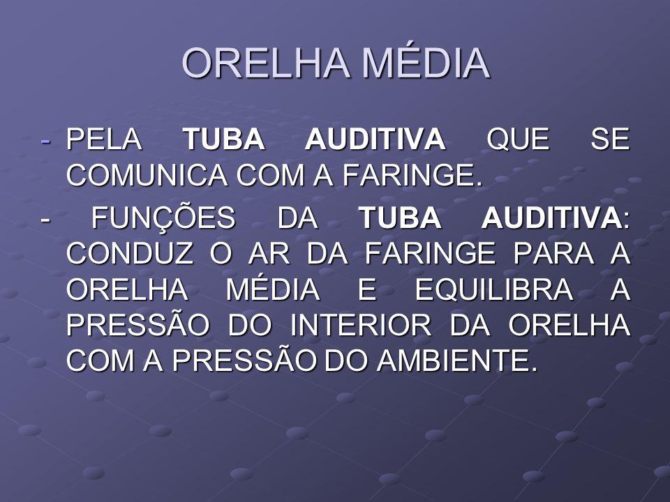 ORELHA MÉDIA PELA TUBA AUDITIVA QUE SE COMUNICA COM A FARINGE.
